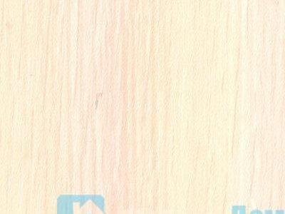 Млечный дуб(Дуб Беленый)