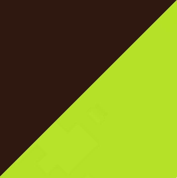 Шоколад глянец/Лайм глянец