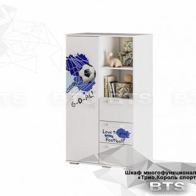 «Трио Король спорта» Шкаф многофункциональный ШК-10 (б)