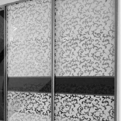 Шкаф-купе «Версаль-2» (вл)