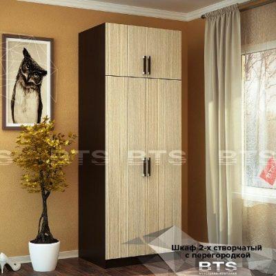 Шкаф 2-х створчатый с перегородкой (б)