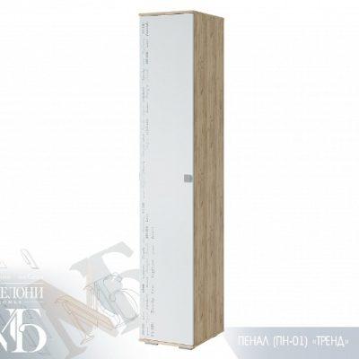 «Тренд» Пенал ПН-01 (б)